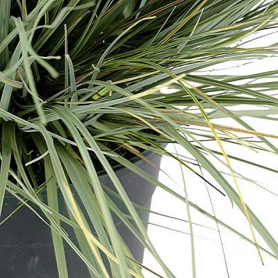 Planta artificial bola grass 1 en La Llimona home