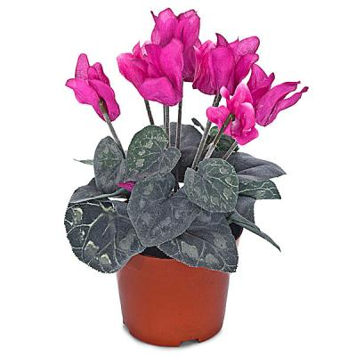 Planta artificial mini cyclamen fucsia Planta artificial mini cyclamen fucsia en lallimona.com