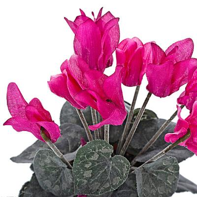 Planta artificial mini cyclamen fucsia Planta artificial mini cyclamen fucsia en lallimona.com detal