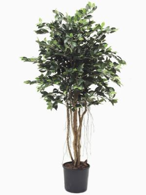 Ficus artificiales de calidad. ARBOL ARTIFICIAL FICUS TROPIC oasisdecor.com