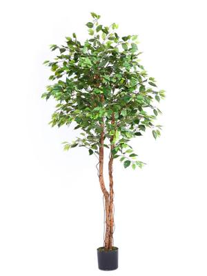 Ficus artificiales economicos. Arbol ficus artificial 183 oasisdecor.com