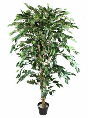 Ficus artificiales economicos. Ficus artificial verde 160 Oasis Decor