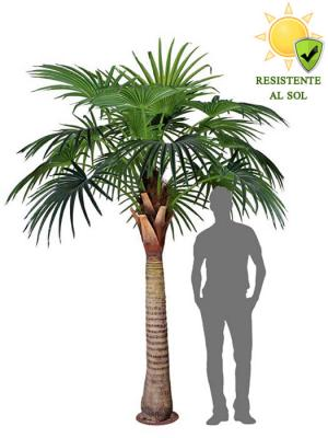 Palmera artificial washingtonia grande exterior Oasis Decor